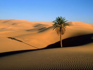 Sahara in Libya-Sahara desert tourism destinations